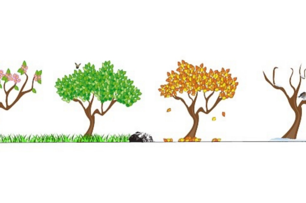 季節によって代謝は変わるのか??夏と冬どちらが痩せるのか。